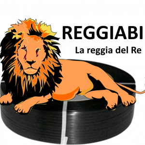 Reggette Torino