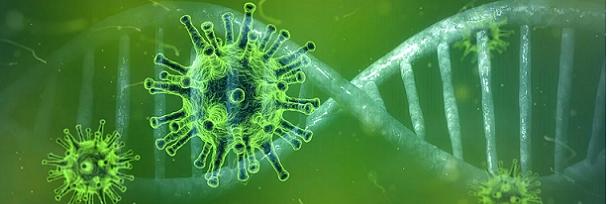 Coronavirus: pochi morti e tanti fallimenti