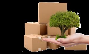 scatole in cartone ecologiche